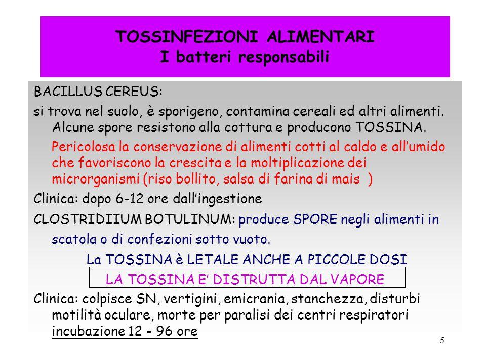 TOSSINFEZIONI ALIMENTARI I batteri responsabili