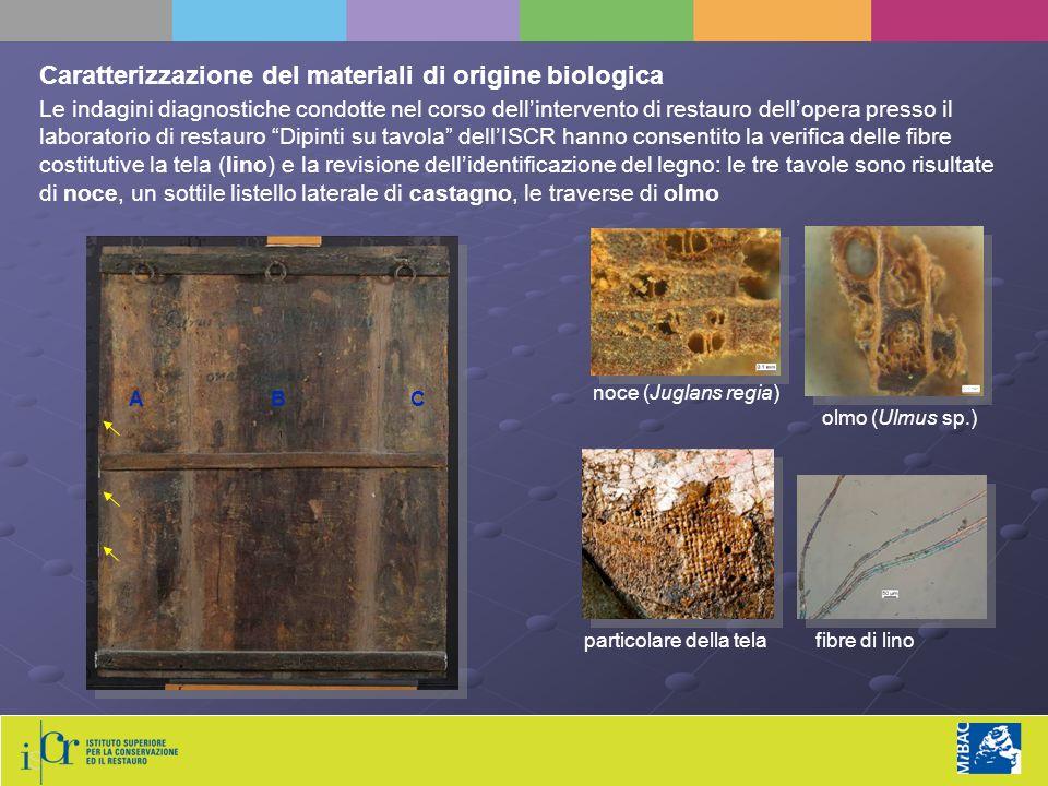 Caratterizzazione del materiali di origine biologica