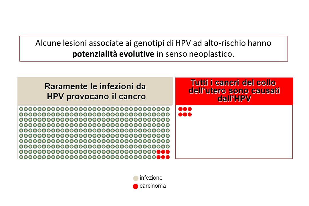 Alcune lesioni associate ai genotipi di HPV ad alto-rischio hanno potenzialità evolutive in senso neoplastico.