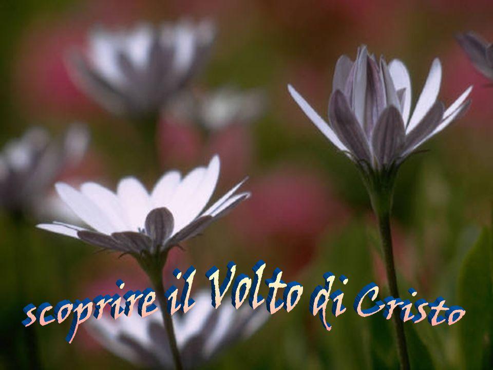 scoprire il Volto di Cristo