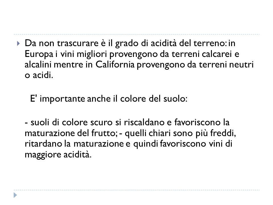Da non trascurare è il grado di acidità del terreno: in Europa i vini migliori provengono da terreni calcarei e alcalini mentre in California provengono da terreni neutri o acidi.