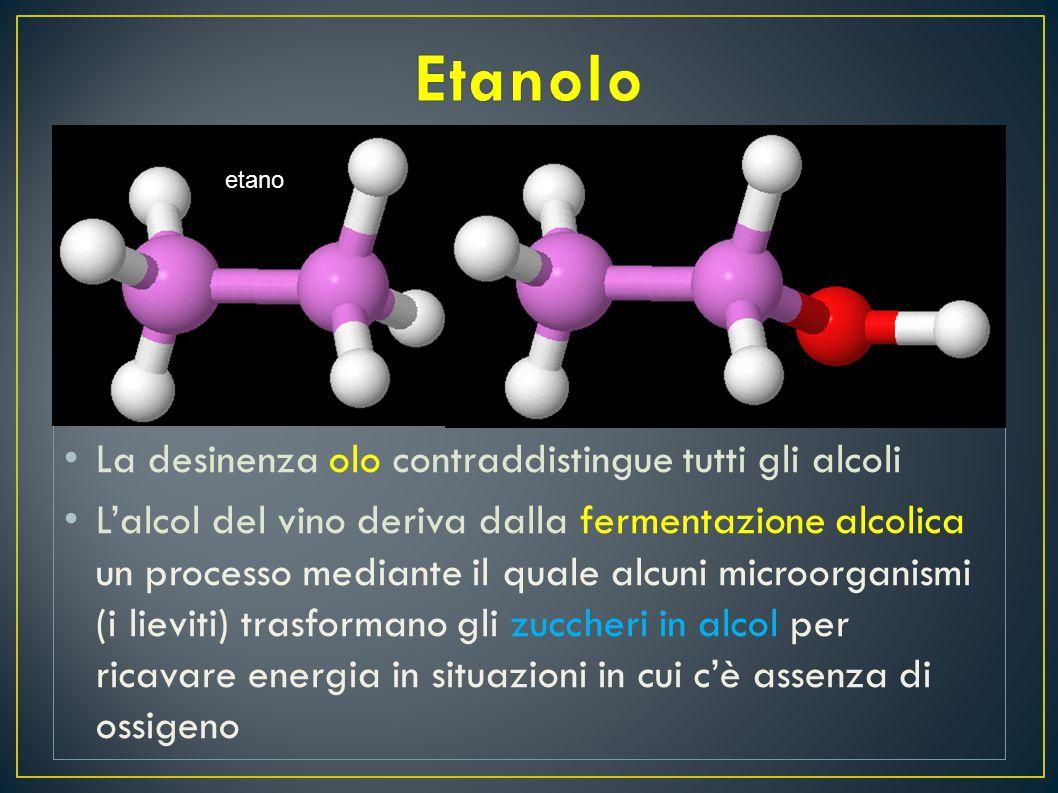 Etanolo È noto che il vino è una bevanda alcolica