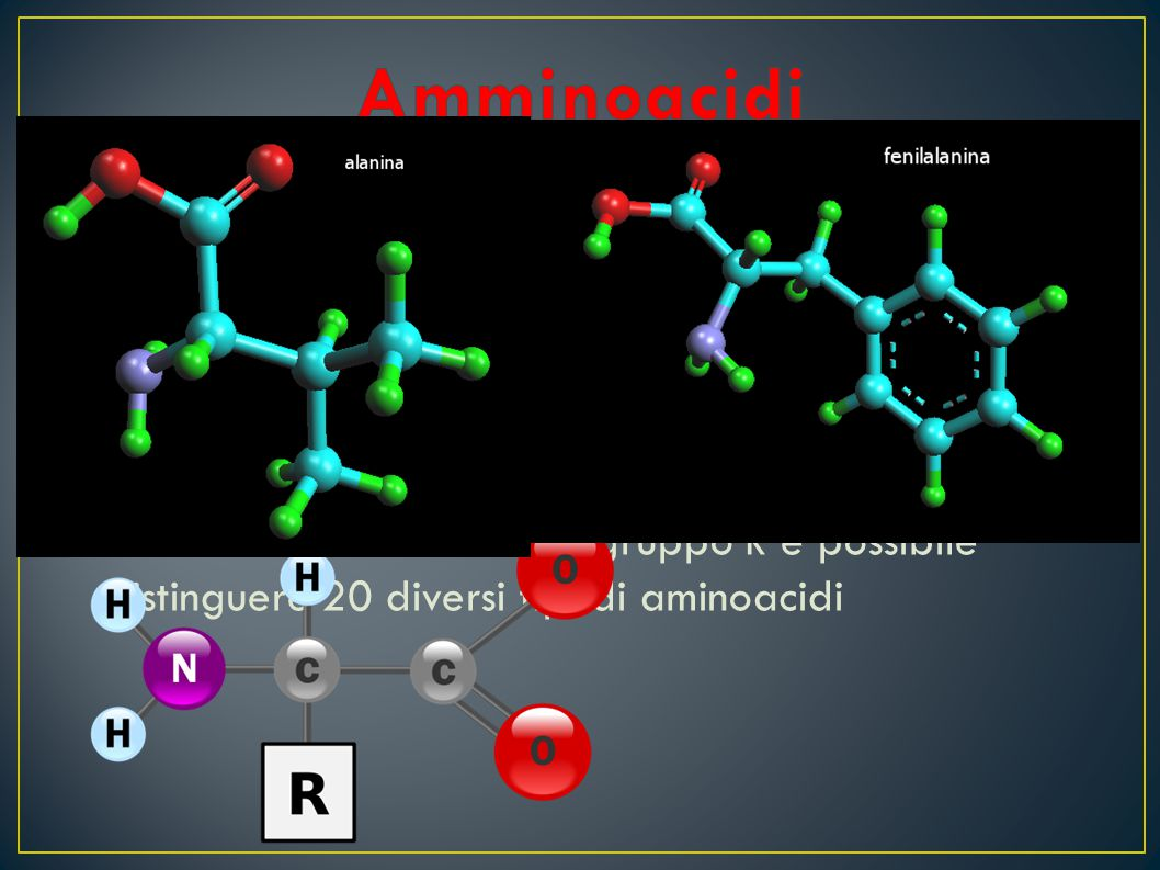 Amminoacidi Gli aminoacidi sono i costituenti delle proteine