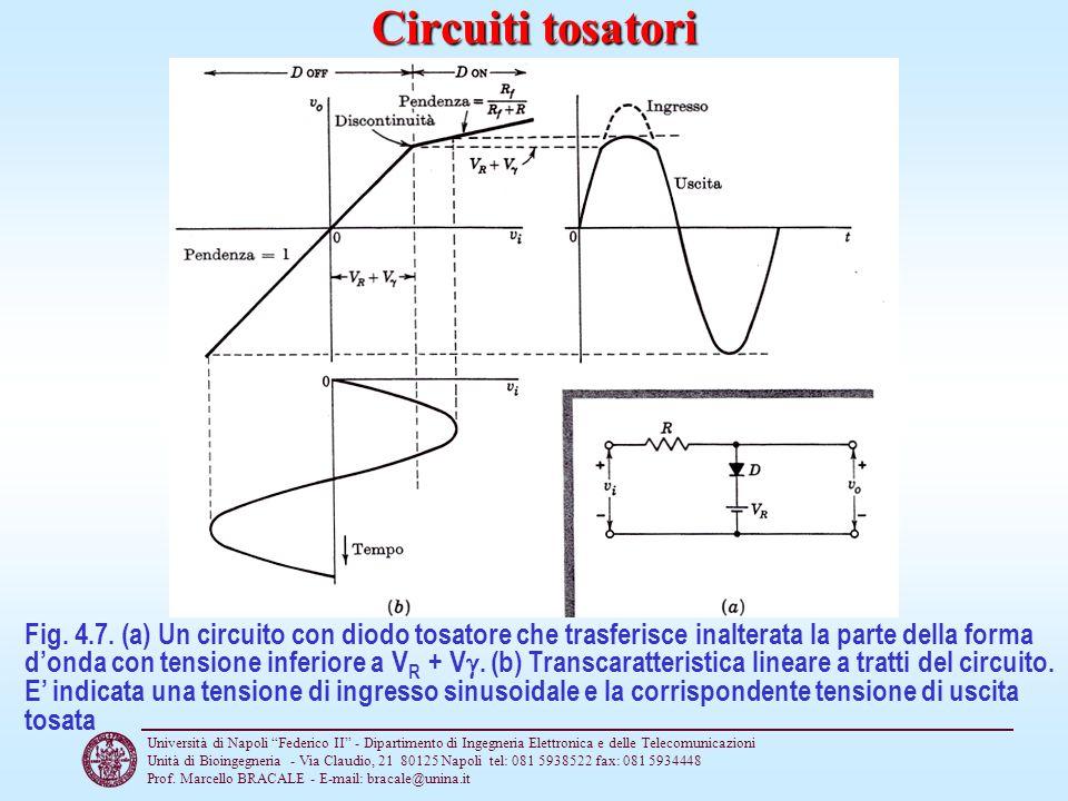 Circuiti tosatori