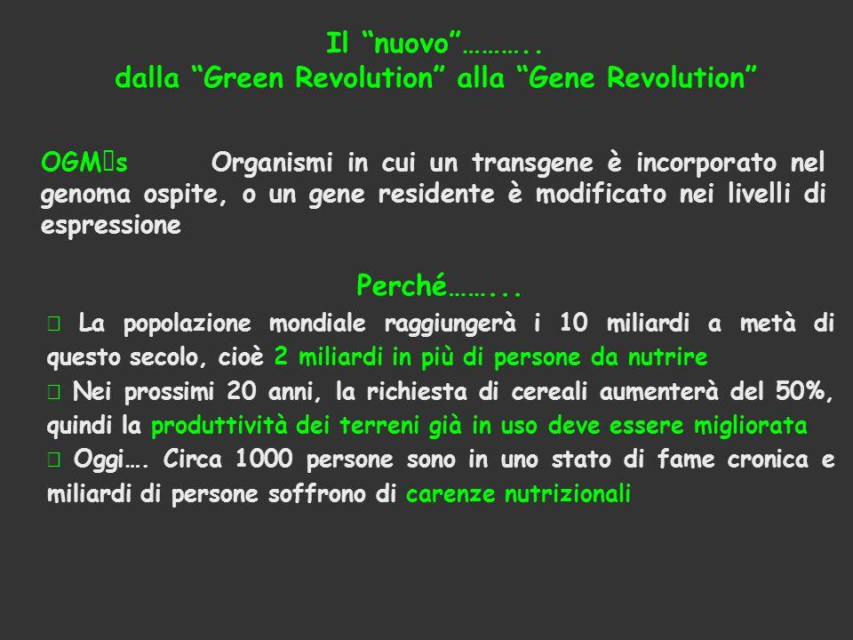 dalla Green Revolution alla Gene Revolution