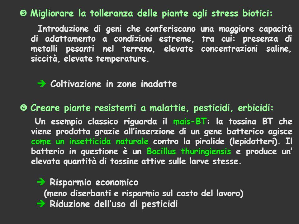  Migliorare la tolleranza delle piante agli stress biotici: