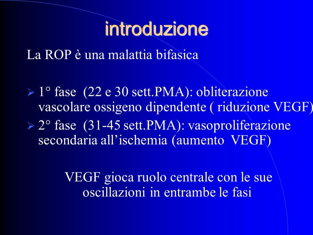 introduzione La ROP è una malattia bifasica