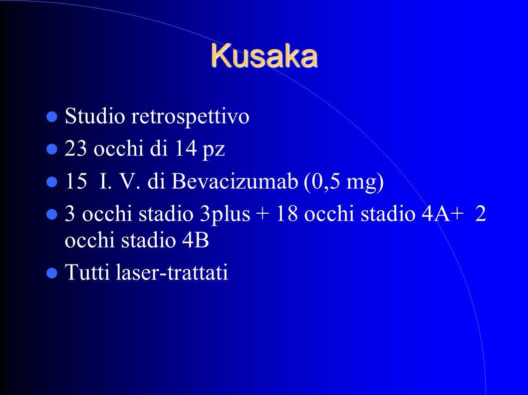 Kusaka Studio retrospettivo 23 occhi di 14 pz
