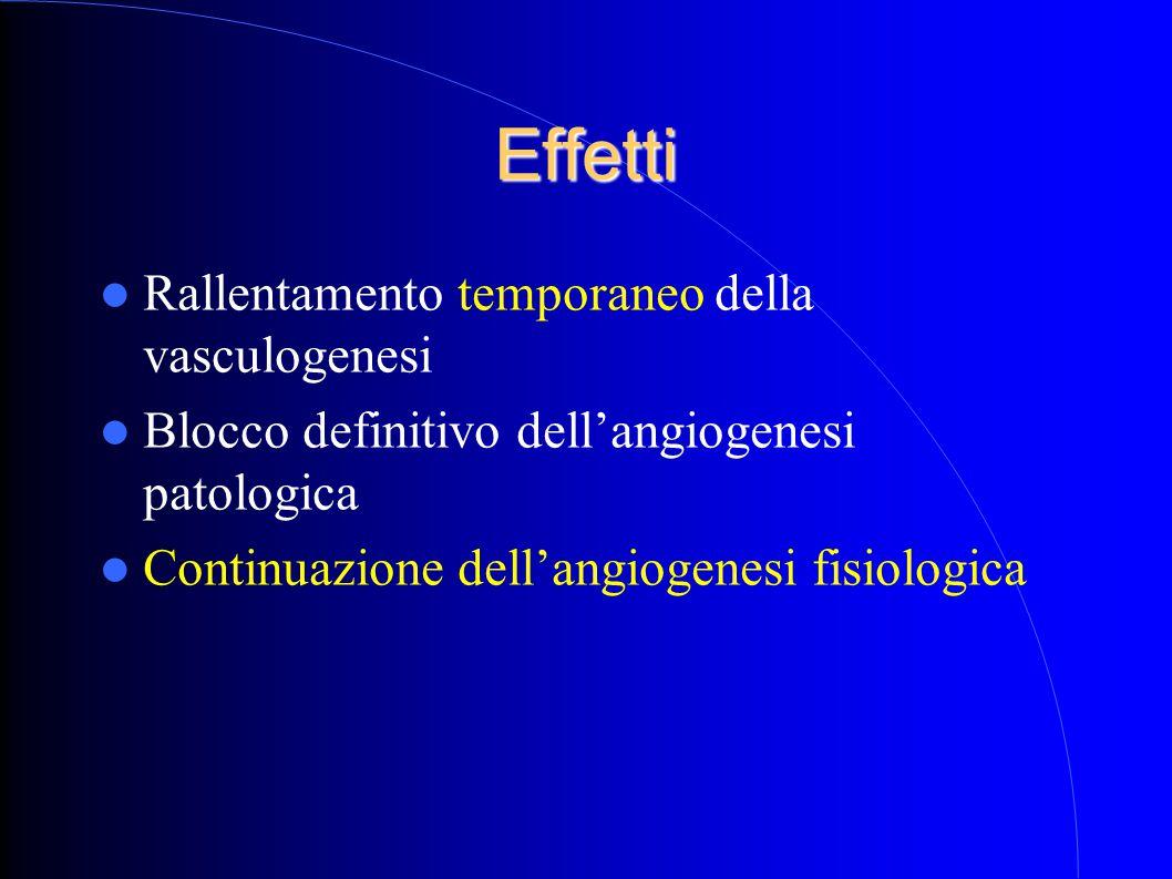 Effetti Rallentamento temporaneo della vasculogenesi