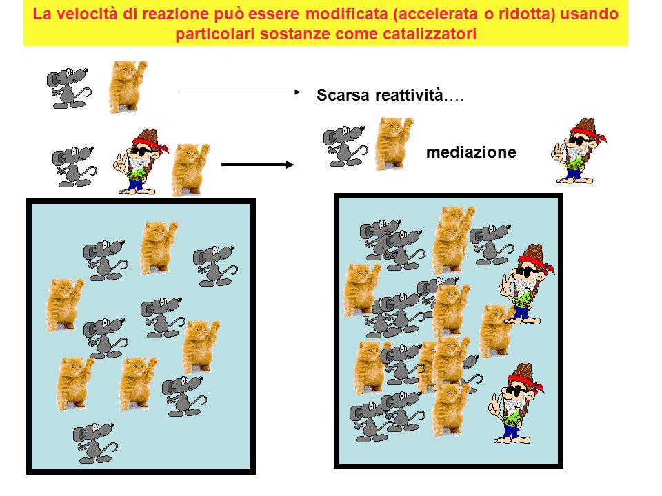 La velocità di reazione può essere modificata (accelerata o ridotta) usando particolari sostanze come catalizzatori