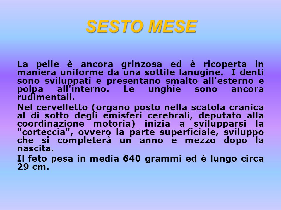 SESTO MESE