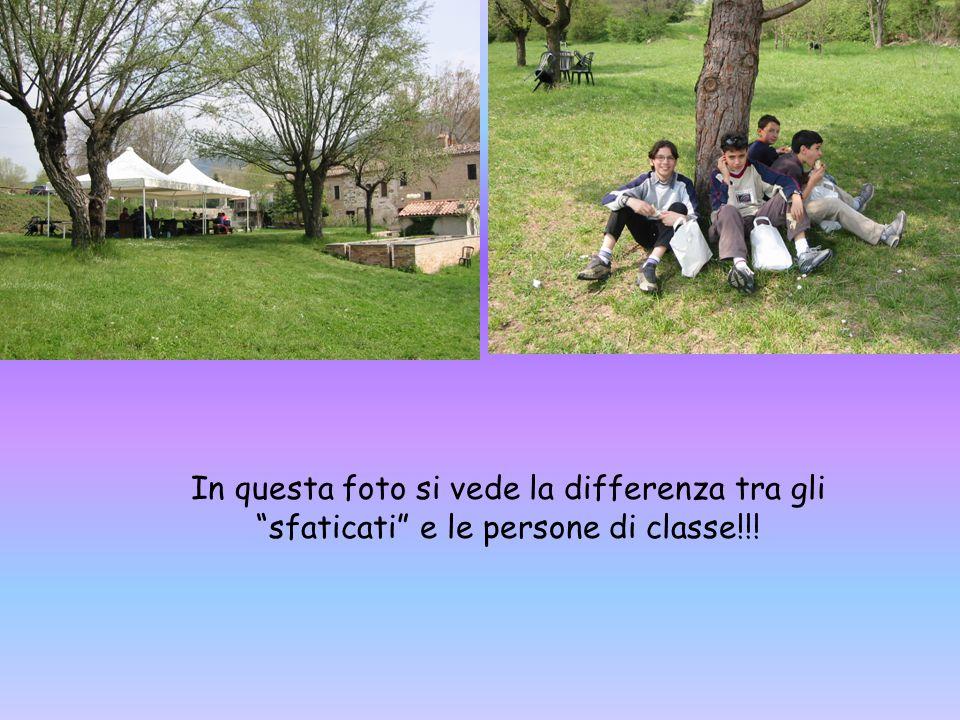 In questa foto si vede la differenza tra gli sfaticati e le persone di classe!!!