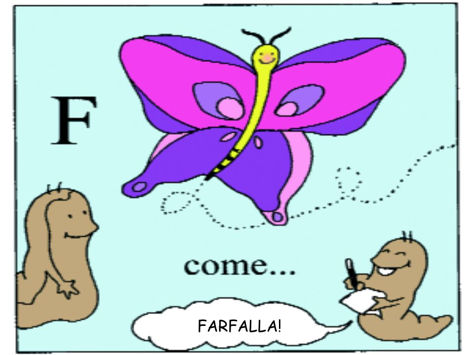 FARFALLA!