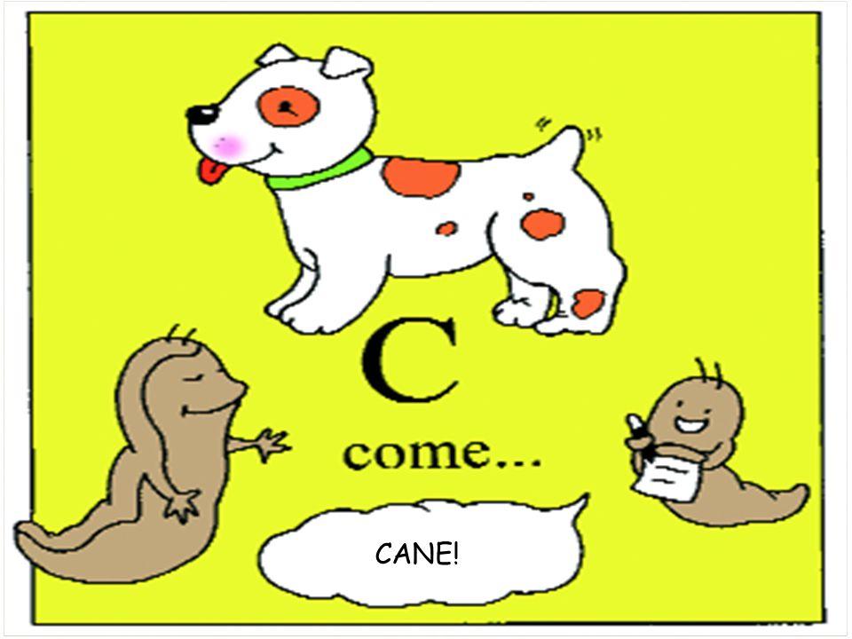 CANE!