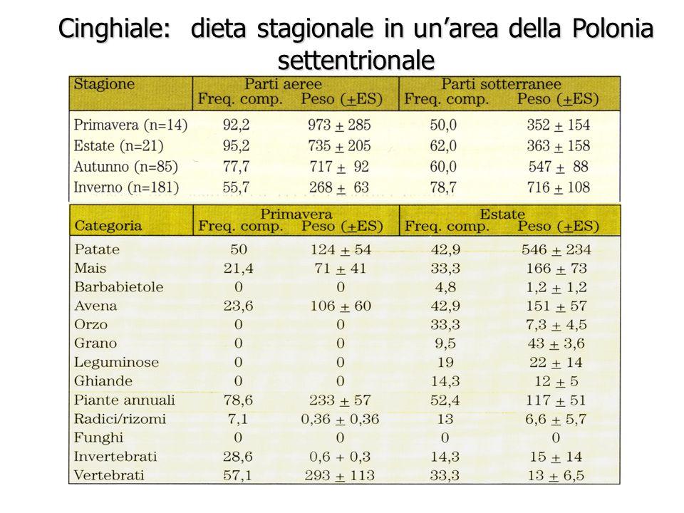 Cinghiale: dieta stagionale in un'area della Polonia settentrionale