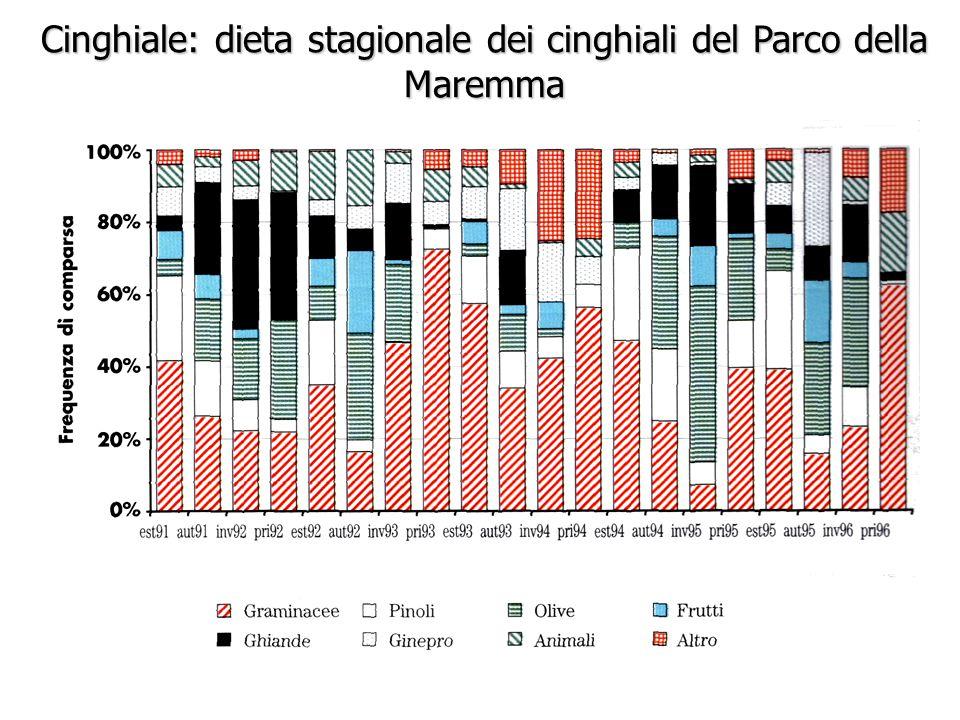 Cinghiale: dieta stagionale dei cinghiali del Parco della Maremma