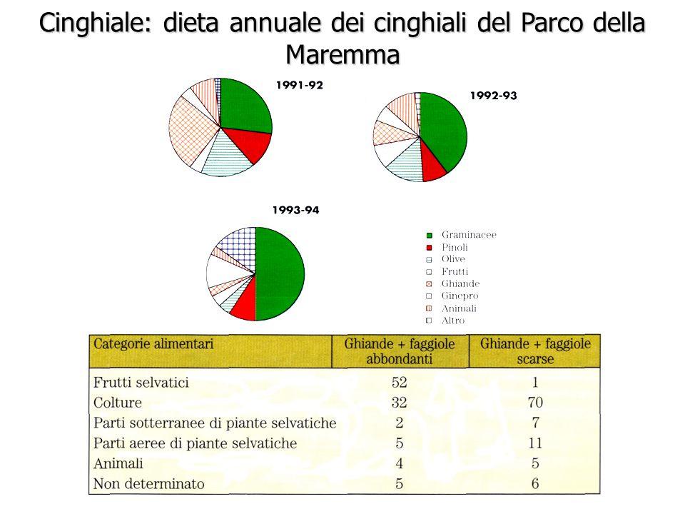 Cinghiale: dieta annuale dei cinghiali del Parco della Maremma