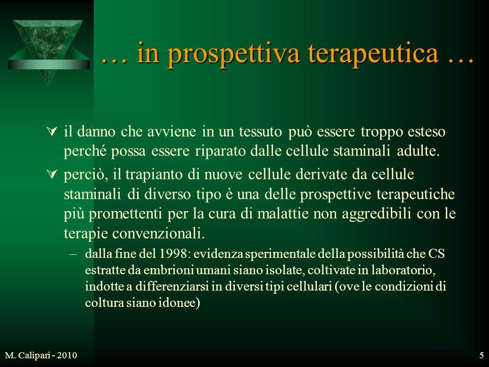… in prospettiva terapeutica …
