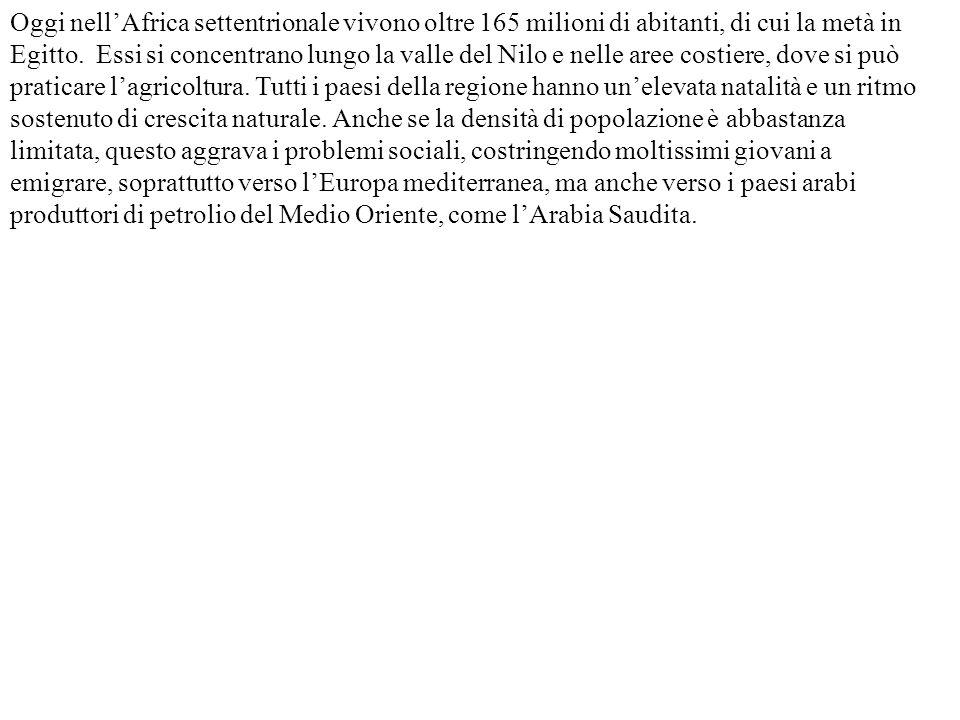 Oggi nell'Africa settentrionale vivono oltre 165 milioni di abitanti, di cui la metà in Egitto.