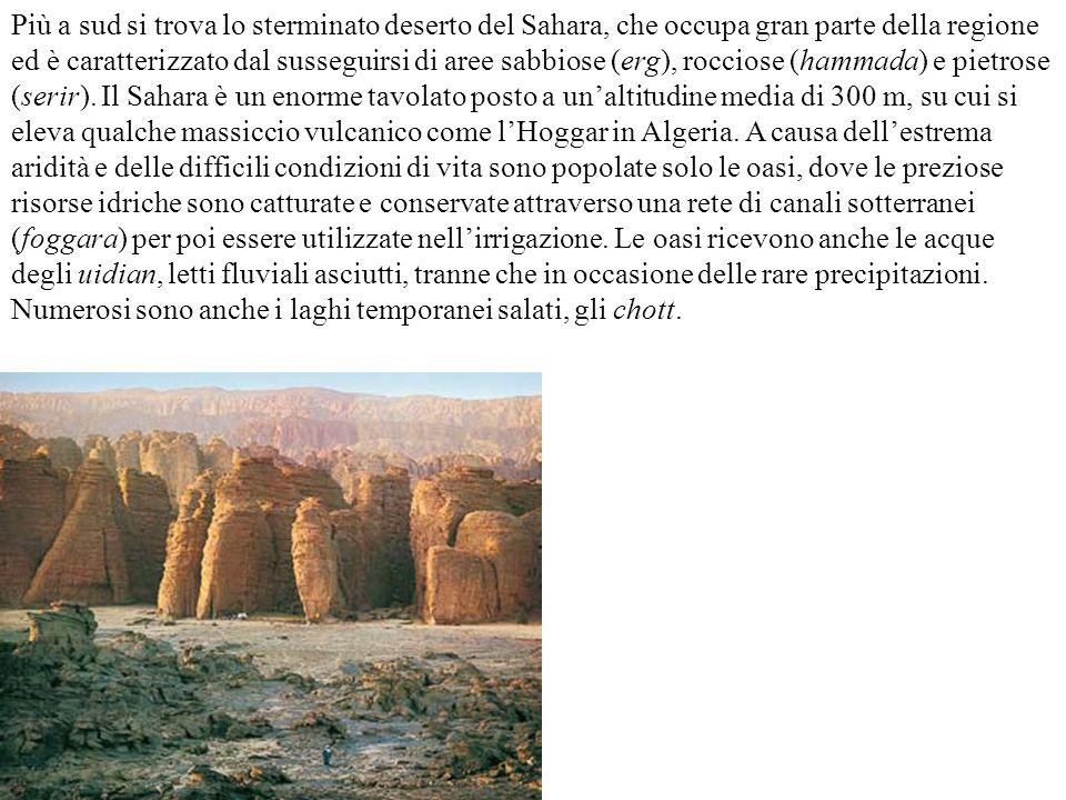 Più a sud si trova lo sterminato deserto del Sahara, che occupa gran parte della regione ed è caratterizzato dal susseguirsi di aree sabbiose (erg), rocciose (hammada) e pietrose (serir). Il Sahara è un enorme tavolato posto a un'altitudine media di 300 m, su cui si eleva qualche massiccio vulcanico come l'Hoggar in Algeria. A causa dell'estrema aridità e delle difficili condizioni di vita sono popolate solo le oasi, dove le preziose