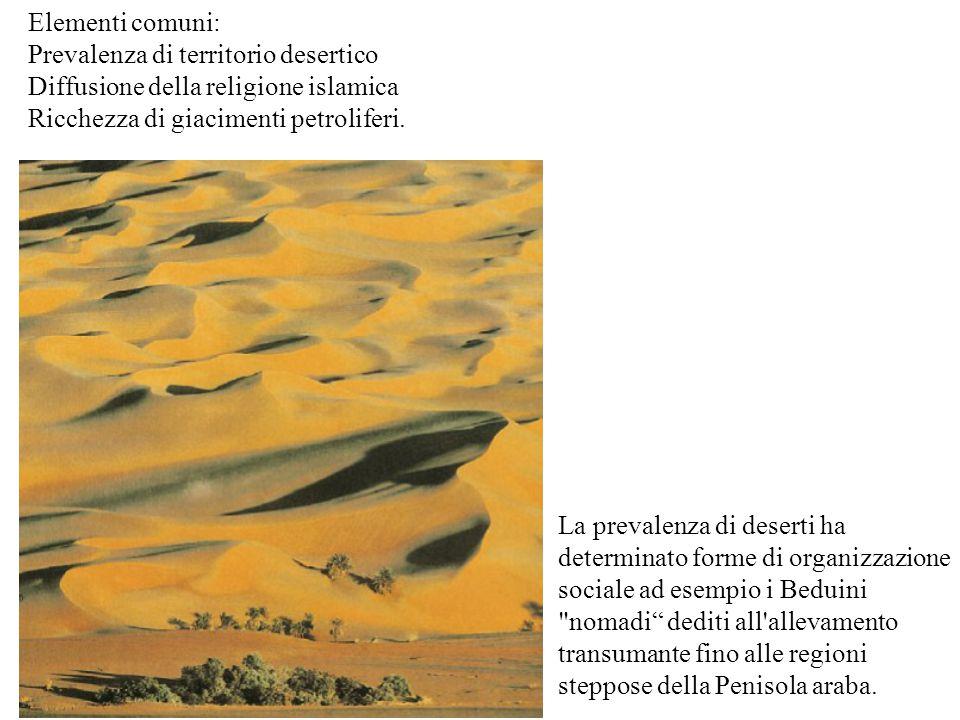 Elementi comuni: Prevalenza di territorio desertico. Diffusione della religione islamica. Ricchezza di giacimenti petroliferi.