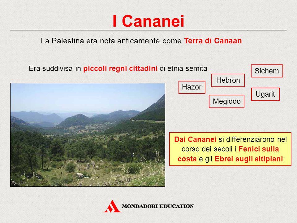 I Cananei La Palestina era nota anticamente come Terra di Canaan