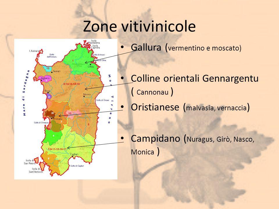Zone vitivinicole Gallura (vermentino e moscato)