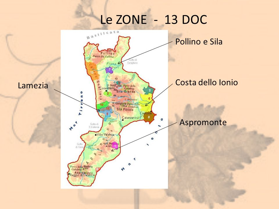 Le ZONE - 13 DOC Pollino e Sila Costa dello Ionio Lamezia Aspromonte