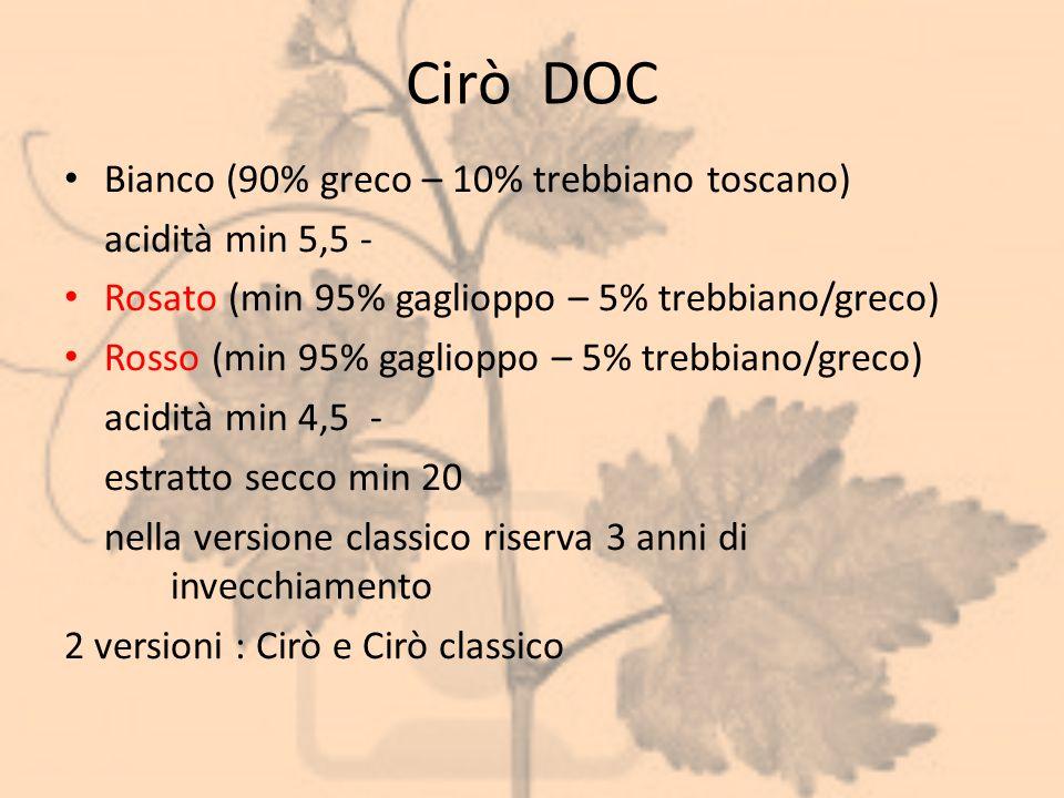 Cirò DOC Bianco (90% greco – 10% trebbiano toscano) acidità min 5,5 -