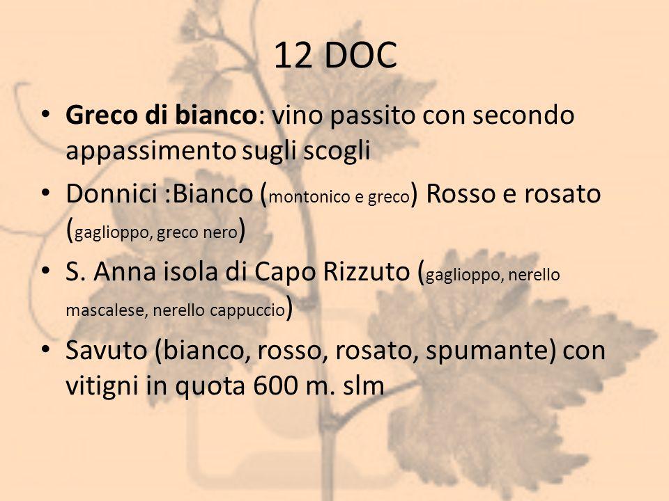 12 DOC Greco di bianco: vino passito con secondo appassimento sugli scogli.
