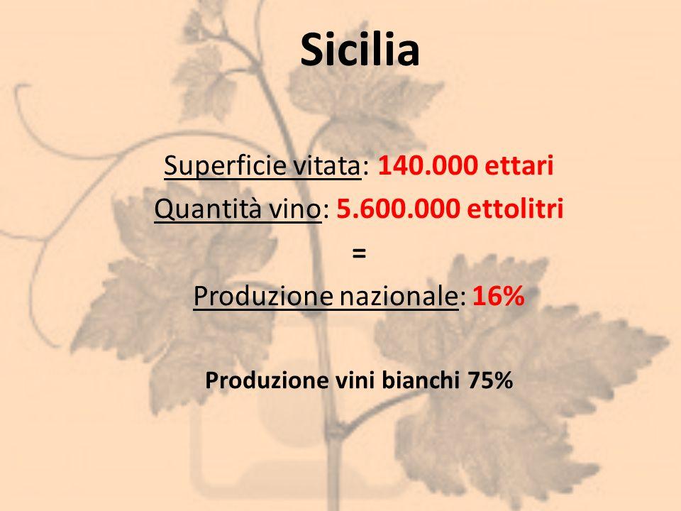 Produzione vini bianchi 75%