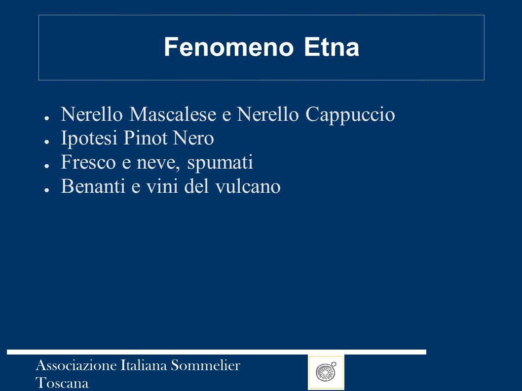 Fenomeno Etna Nerello Mascalese e Nerello Cappuccio Ipotesi Pinot Nero