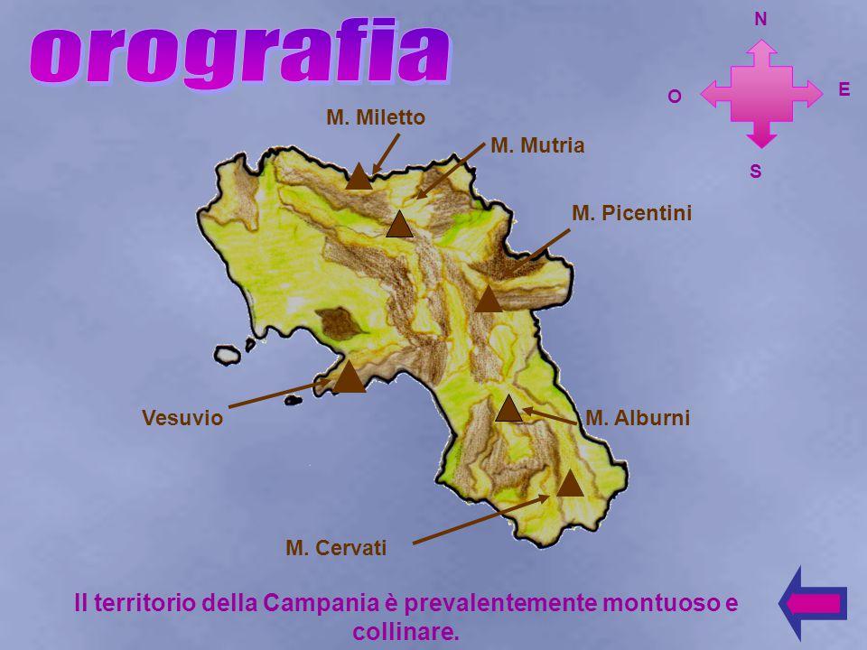 Il territorio della Campania è prevalentemente montuoso e collinare.