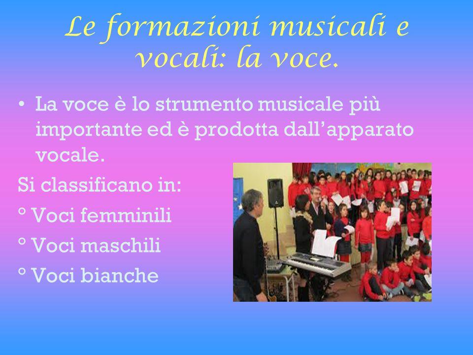 Le formazioni musicali e vocali: la voce.