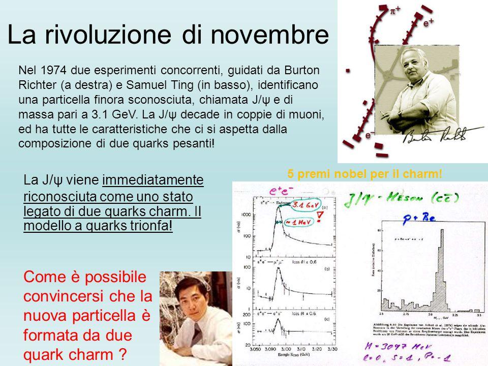 La rivoluzione di novembre