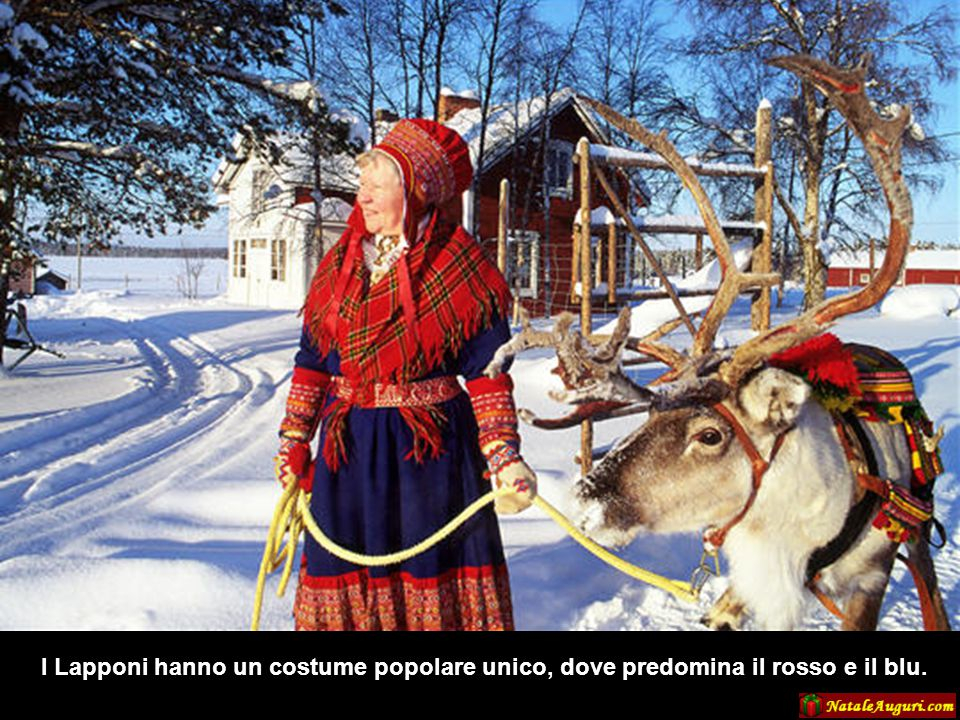 I Lapponi hanno un costume popolare unico, dove predomina il rosso e il blu.
