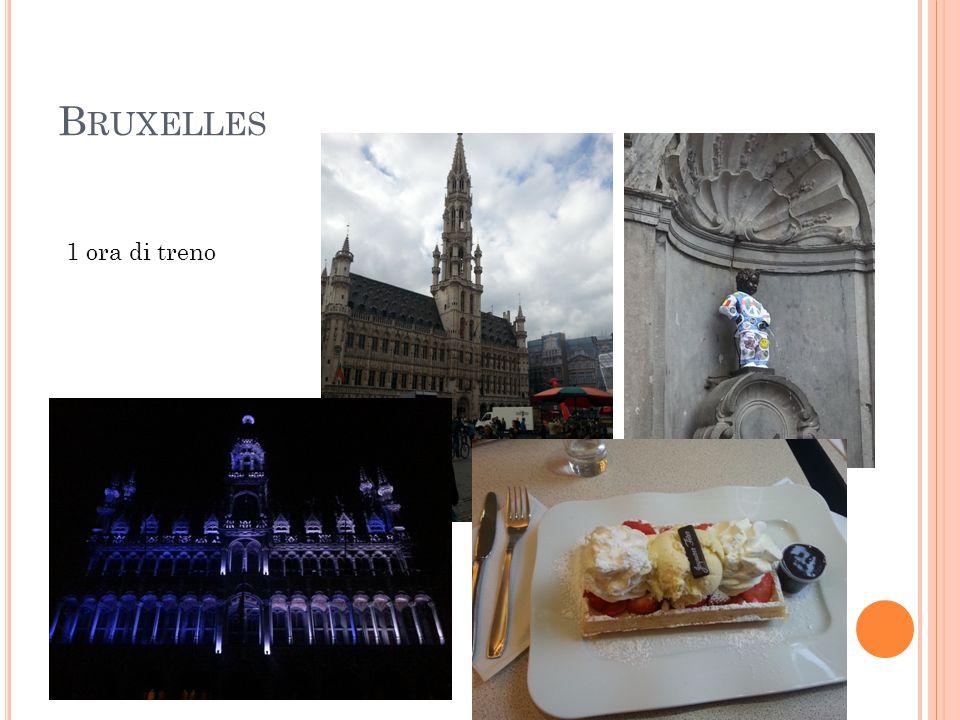 Bruxelles 1 ora di treno