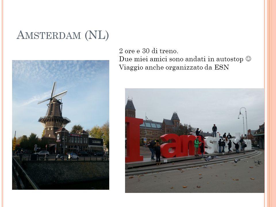 Amsterdam (NL) 2 ore e 30 di treno.