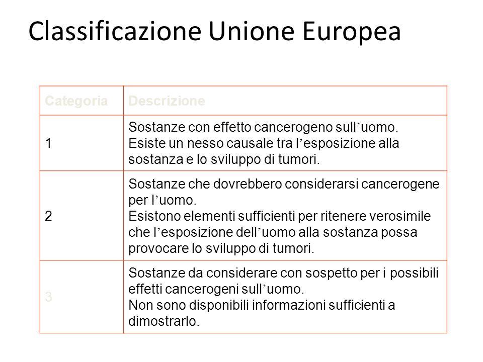 Classificazione Unione Europea