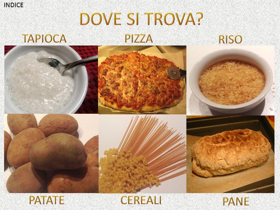 INDICE DOVE SI TROVA TAPIOCA PIZZA RISO PATATE CEREALI PANE