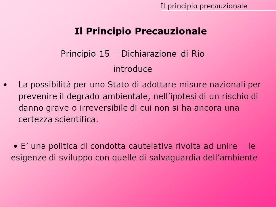 Il Principio Precauzionale