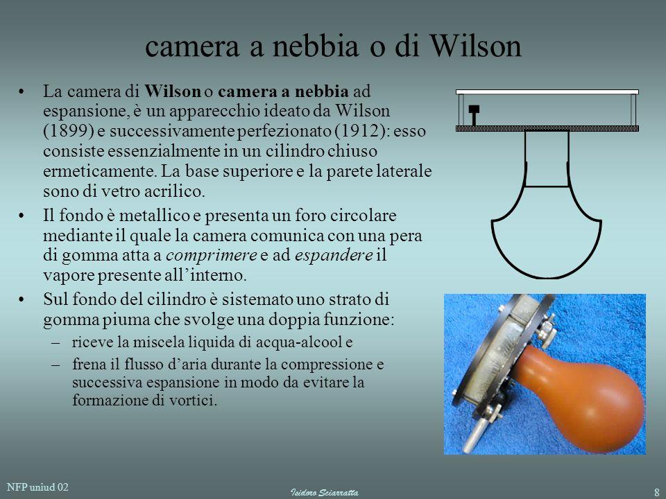 camera a nebbia o di Wilson