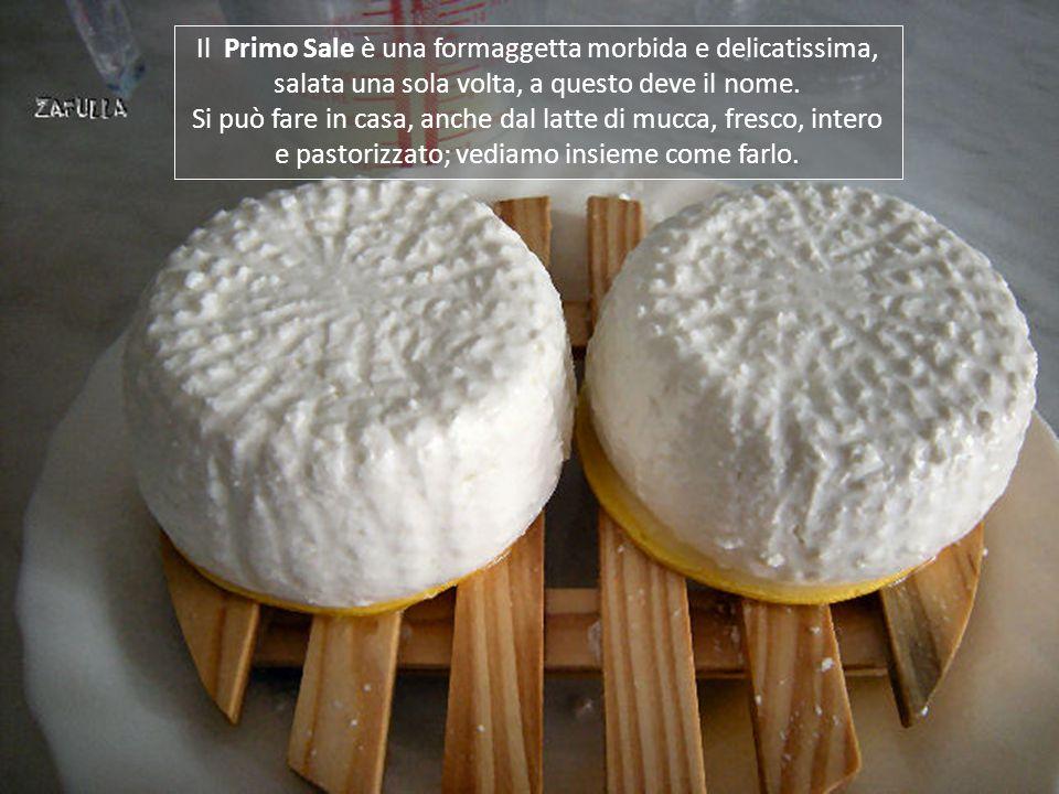 Il Primo Sale è una formaggetta morbida e delicatissima, salata una sola volta, a questo deve il nome.