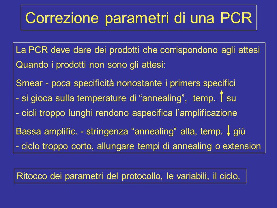 Correzione parametri di una PCR