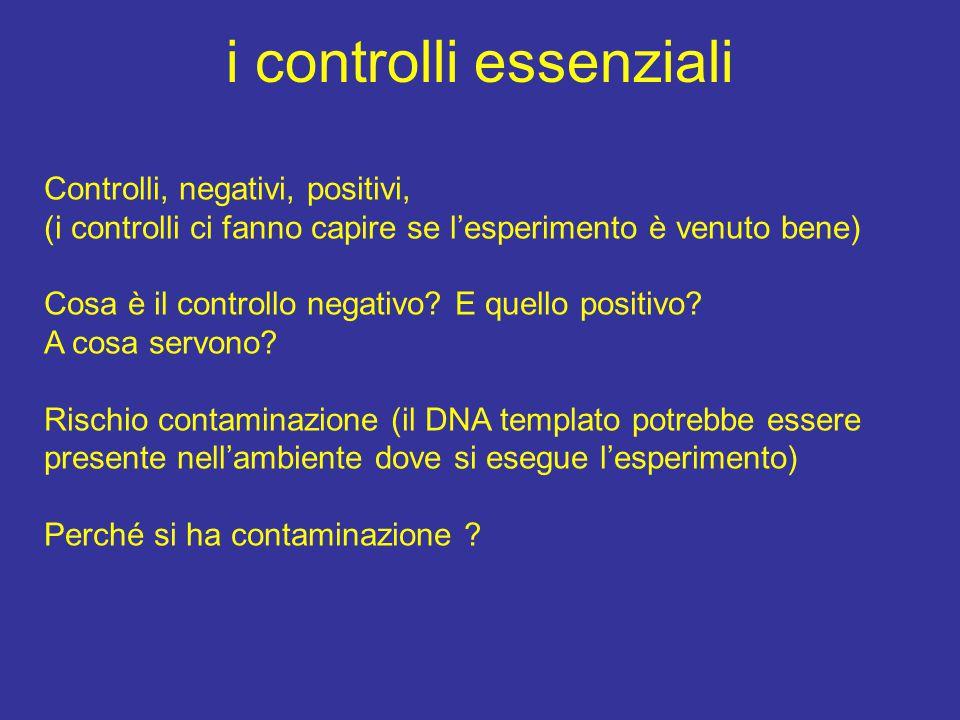 i controlli essenziali