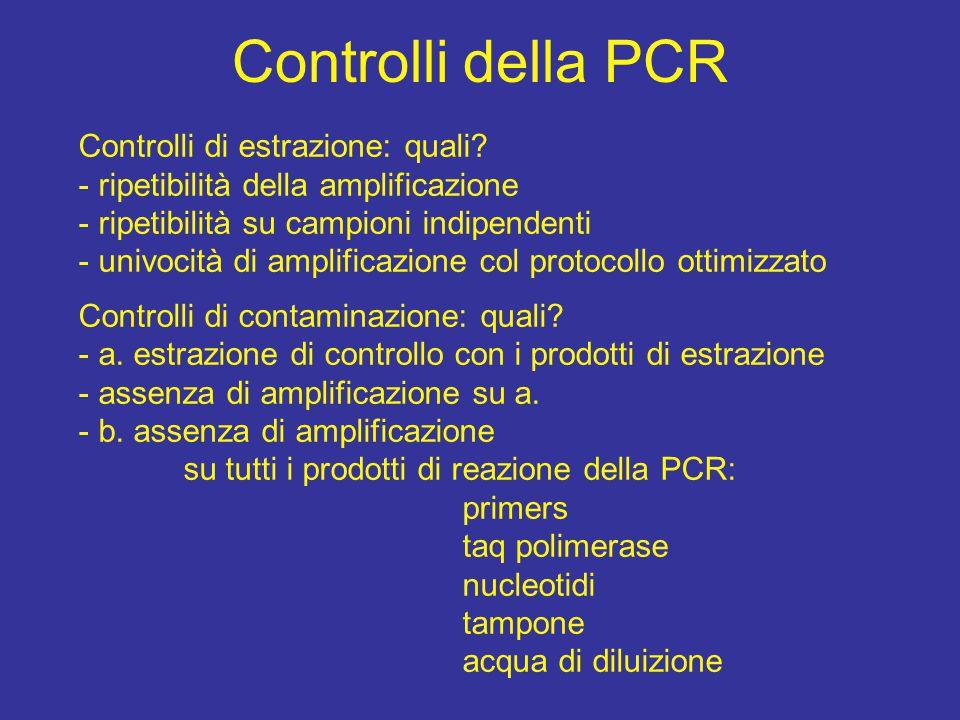 Controlli della PCR Controlli di estrazione: quali