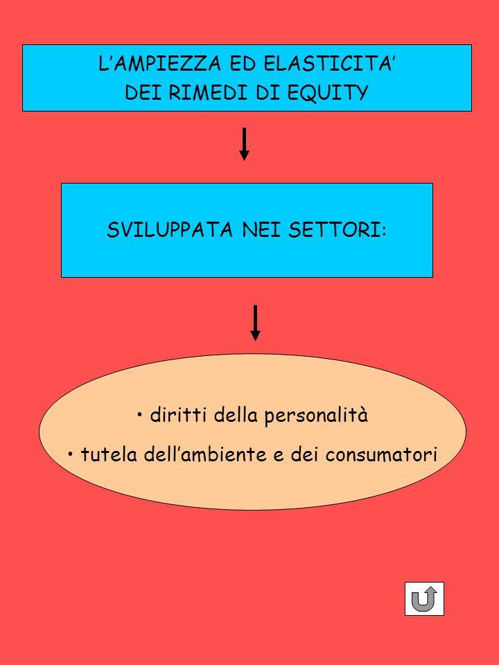 L'AMPIEZZA ED ELASTICITA' DEI RIMEDI DI EQUITY