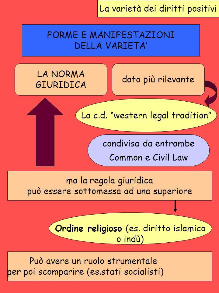 La varietà dei diritti positivi