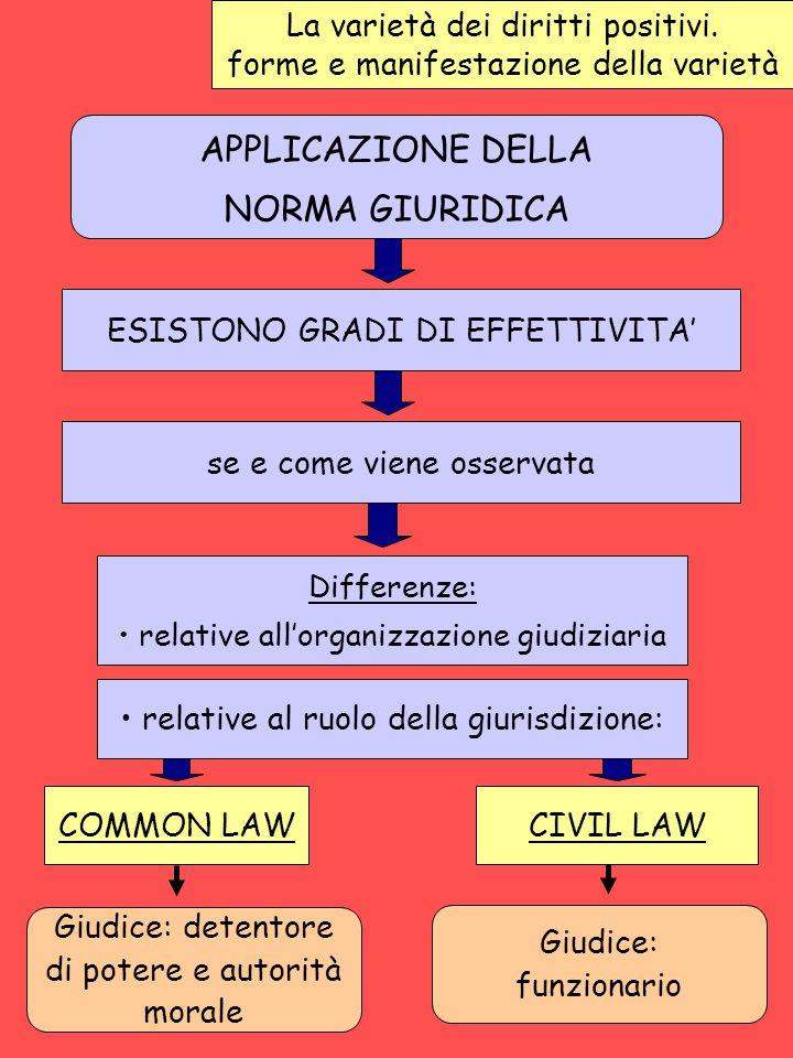 APPLICAZIONE DELLA NORMA GIURIDICA La varietà dei diritti positivi.