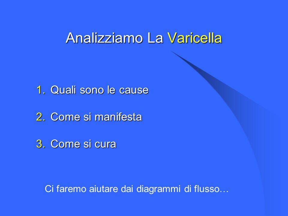 Analizziamo La Varicella